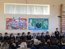 P5 ASSEMBLY