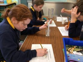 Heat Insulation and Conduction - Primary 7